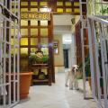 MAXIM Habitaciones - otel ve Oda fotoğrafları