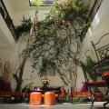 Riad White Flowers - otel ve Oda fotoğrafları
