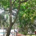 Atitancito Relajante - hotel og værelse billeder