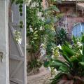 Hotel Florita - hotel and room photos