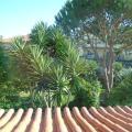 Apartamentos Em Moradia Com Jardim - kamer en hotel foto's