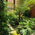 Acogedor departamento en zona provilegiada Guatemala Ciudad - chambres d'hôtel et photos
