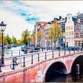 Quality Inn & Suites Amsterdam Quispamsis - фотографии гостиницы и номеров