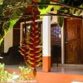 Hospedaje Jose Gorgues - fotos de hotel y habitaciones