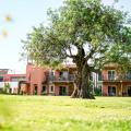 Robinson Club Quinta Da Ria - Hotel- und Zimmerausstattung Fotos