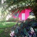 Pink house - viesnīcas un istabu fotogrāfijas