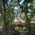 Villas Ecotucan - hotel and room photos
