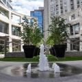Luxury condo in Midtown Toronto - hotel and room photos