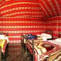 Mohammed Mutlak Camp - fotografii hotel şi cameră