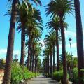 Residencial Puerta de Aguere - chambres d'hôtel et photos