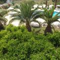 Leonidas Hotel & Studios - kamer en hotel foto's