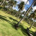 Hacienda Don Pancho & Villas - fotos do hotel e o quarto