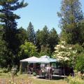 Cedarwood Lodge - hotel a pokoj fotografie