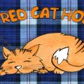 The Red Cat Hostel - hotel and room photos