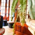 Maria Giovanna Guest House -صور الفندق والغرفة