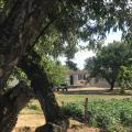 The Farm Tiny House - Tiny Casa -호텔 및 객실 사진