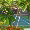 Coyaba Beach Resort - szálloda és szoba-fotók