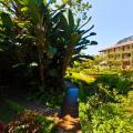Hotel Atitlan - Hotel- und Zimmerausstattung Fotos