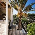 Dar Dina: peaceful paradise in Djerba - fotografii hotel şi cameră