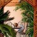Riad Slawi - viesnīcas un istabu fotogrāfijas