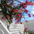 Apartamentos El Capricho - фотографии гостиницы и номеров