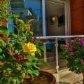 Hotel Sonne - Adults Only - фотографії готелю та кімнати