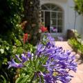 Villa Treville - otel ve Oda fotoğrafları