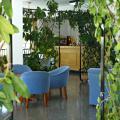 Hostal Condemar - otel ve Oda fotoğrafları