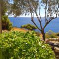 Kavos Bay Seafront Hotel - foto hotel dan kamar