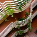 Casa dos Serpas - фотографии гостиницы и номеров