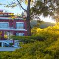 Bloom Alacati - фотографії готелю та кімнати