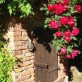 Il Poggiolo Delle Rose Bed&Breakfast - hotel and room photos