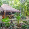 Fotos de quarto de Cavelands in the Jungle