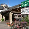 Silver Spruce Inn - фотографии гостиницы и номеров