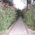 Ksar Elkabbaba - Hotel- und Zimmerausstattung Fotos