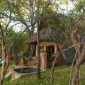 Musango Safari Lodge - фотографии гостиницы и номеров