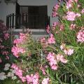 Casa Morgado - hotel og værelse billeder