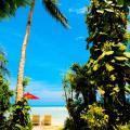 Samui Island Beach Resort & Hotel - hotel and room photos
