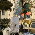 Vila Monet - фотографии гостиницы и номеров