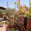 Riad Mariana - รูปภาพห้องพักและโรงแรม