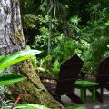 Hotel Jungle Lodge Tikal фотографии номера