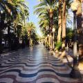 Altamira Apartments - fotos de hotel y habitaciones