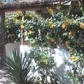 Le Calao du Lac Rose - fotografii hotel şi cameră