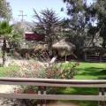 Hostal Los Alamos 1 - hotel and room photos
