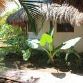 Hotel Casa Barbara - otel ve Oda fotoğrafları