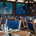 Bimini Big Game Club Resort & Marina - hotel and room photos