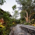 Foresto Sukhothai Guesthome - fotos de hotel y habitaciones