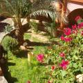 Kasbah Zitoune -صور الفندق والغرفة