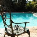 Calico Guest House - фотографії готелю та кімнати