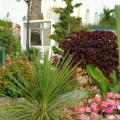 Les jardins de l'Atlantique - hotel and room photos